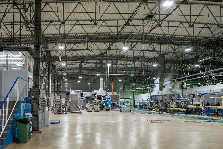 Modernizacja oświetlenia u producenta mrożonek - Hortex - Luxon LED