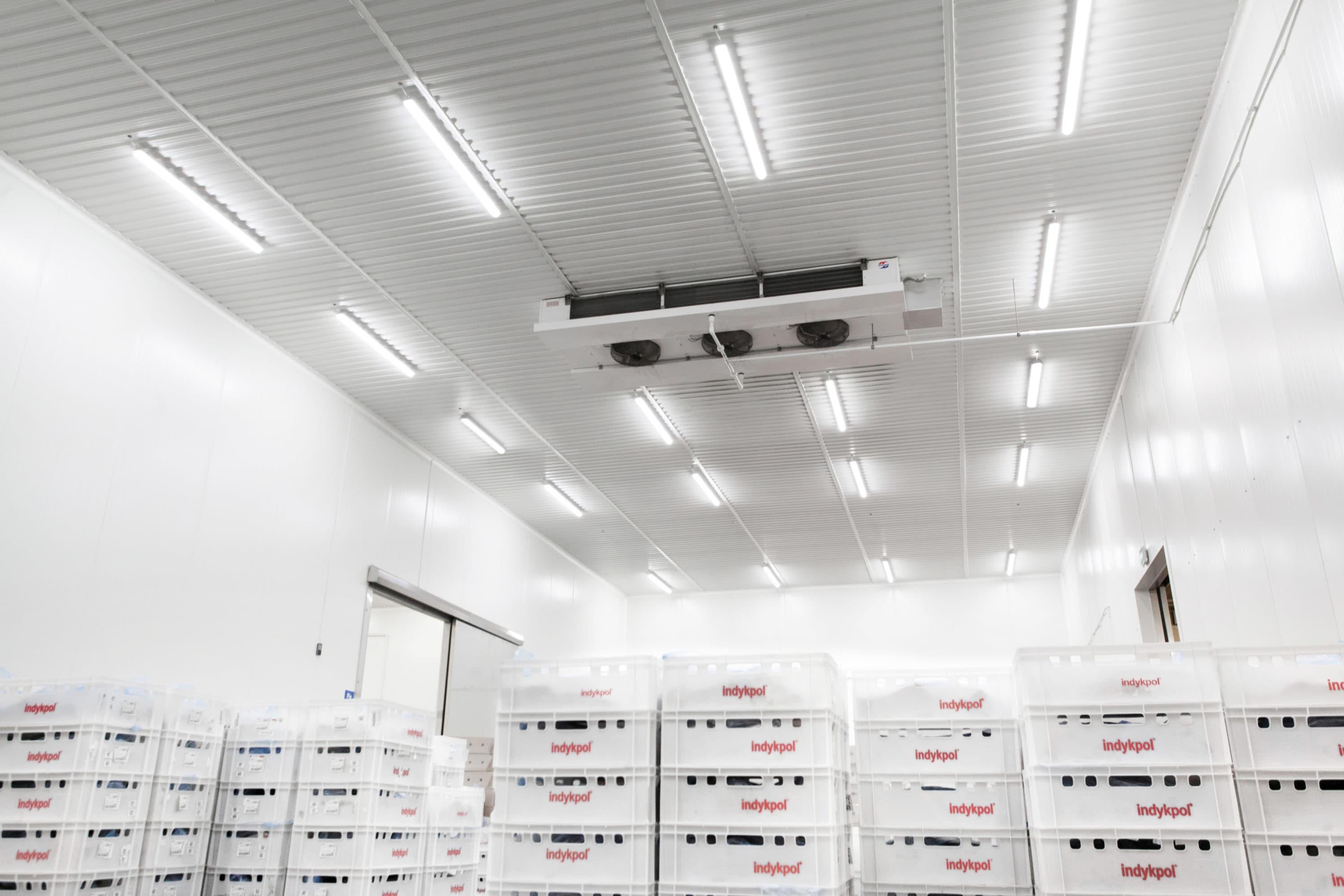 Modernizacja oświetlenia w firmie Indykpol