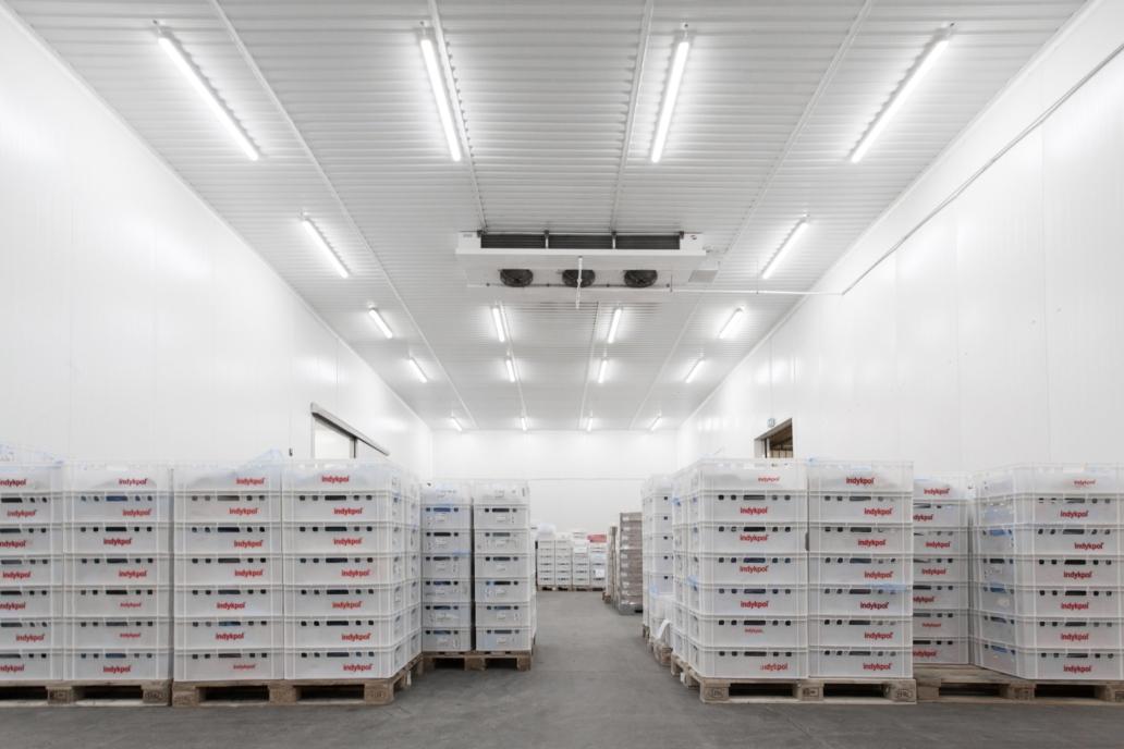 Oprawy Industrial w zmodernizowanym magazynie firmy Indykpol - Luxon LED