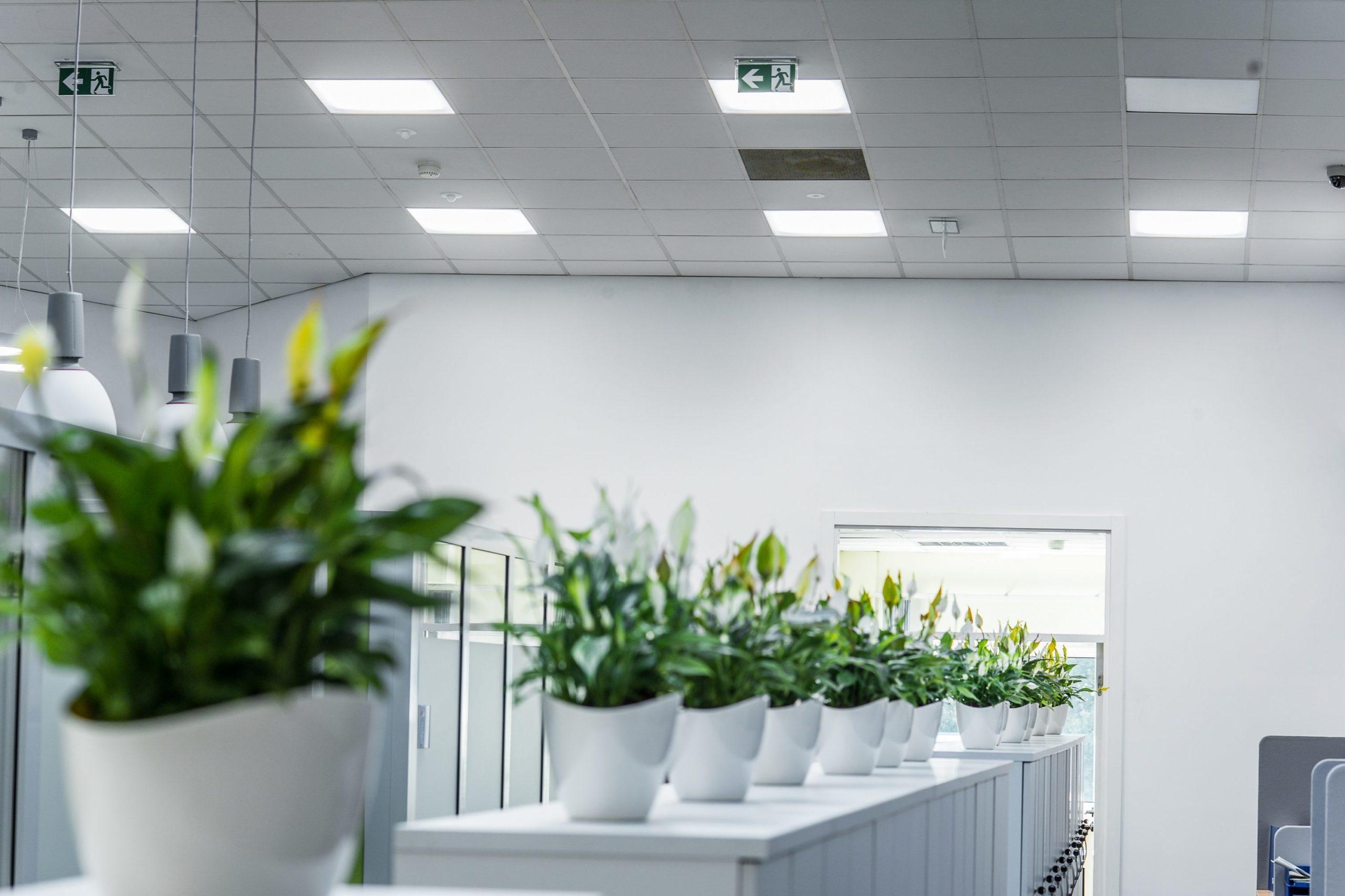 Oprawa Edge w socjalno-biurowej częsci firmy Pepsico - Luxon LED